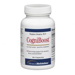 CogniBoost